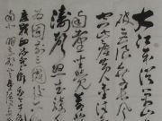 参赛者:江西彭泽县-毕国风