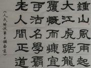 参赛者:安徽临泉-金志生