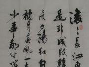 参赛者:广东清远-汪永明