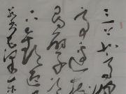 参赛者:河南伊川-智庆坤