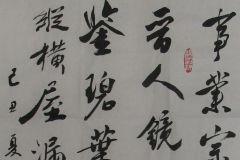 参赛者:河北石家庄-崔春奇