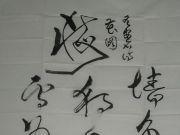 参赛者:黑龙江绥滨县-张福太