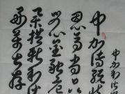 参赛者:河北-永清-贾宏智