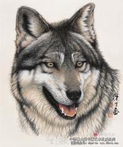 刘荣生的狼画系列评析