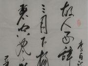 参赛者:宁夏银川-何守成