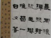 参赛者:黑龙江鸡西市-程晓海