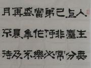 参赛者:北京延庆-张明康(更)