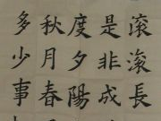 参赛者:山东聊城-刘淼
