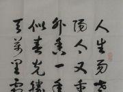 参赛者:河北石家庄-王高宣2件