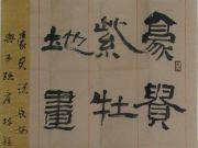 参赛者:黑龙江集贤县-张忠义