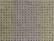 参赛者:江西宁都-陈锡明