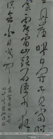 参赛者:重庆沙坪坝-范功