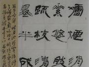 参赛者:河南宁陵-宁亚林