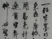 参赛者:云南昆明-李月生