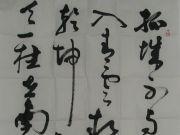 参赛者:广西大新-袁胜聪
