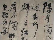 参赛者:山东滕州-胡振国