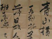 参赛者:湖南益阳-朱华杨