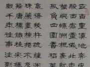 参赛者:吉林通榆县-李树芳