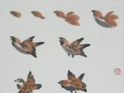 写意花鸟画教程