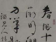 参赛者:河北辛集-姚铁军