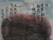 参赛者:安徽岳西县-王学忠