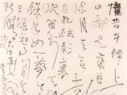 率情率性的中国书法