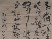 参赛者:贵州遵义-徐晓军