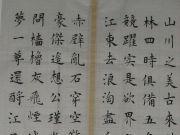 参赛者:江西宁都-林川