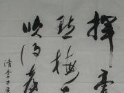 参赛者:江苏无锡-孙伯铭