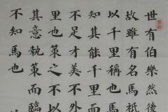 参赛者:四川巴中-吕泓江