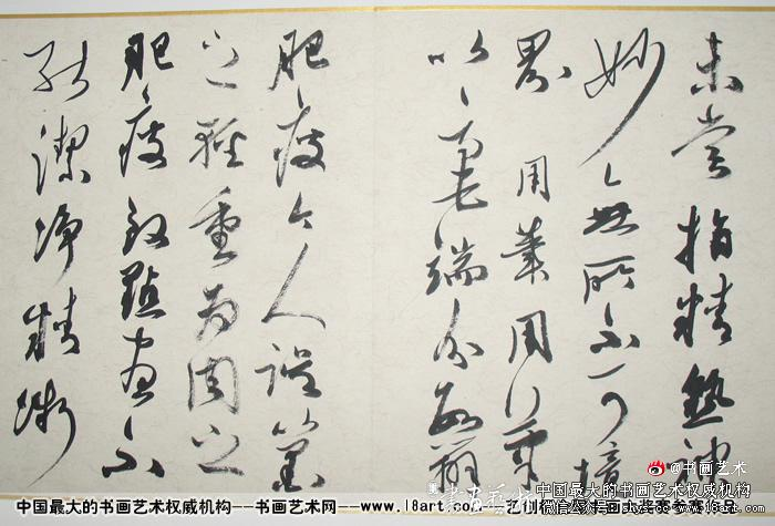 参赛者:上海--张卫东--41岁-中国书协会员
